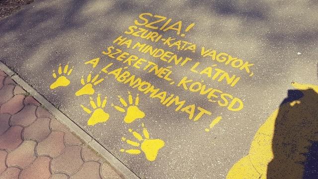 Gradina Zoologica din Szeged